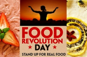20120517_montreal-food-revolution-day-nux-centre-rawsome-raw-food-yoga